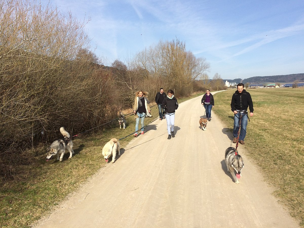 Husky Ranch Dietfurt